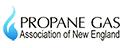 PGANE logo
